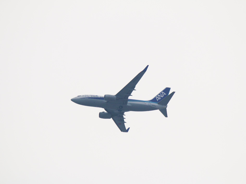 旅客機_ANA1