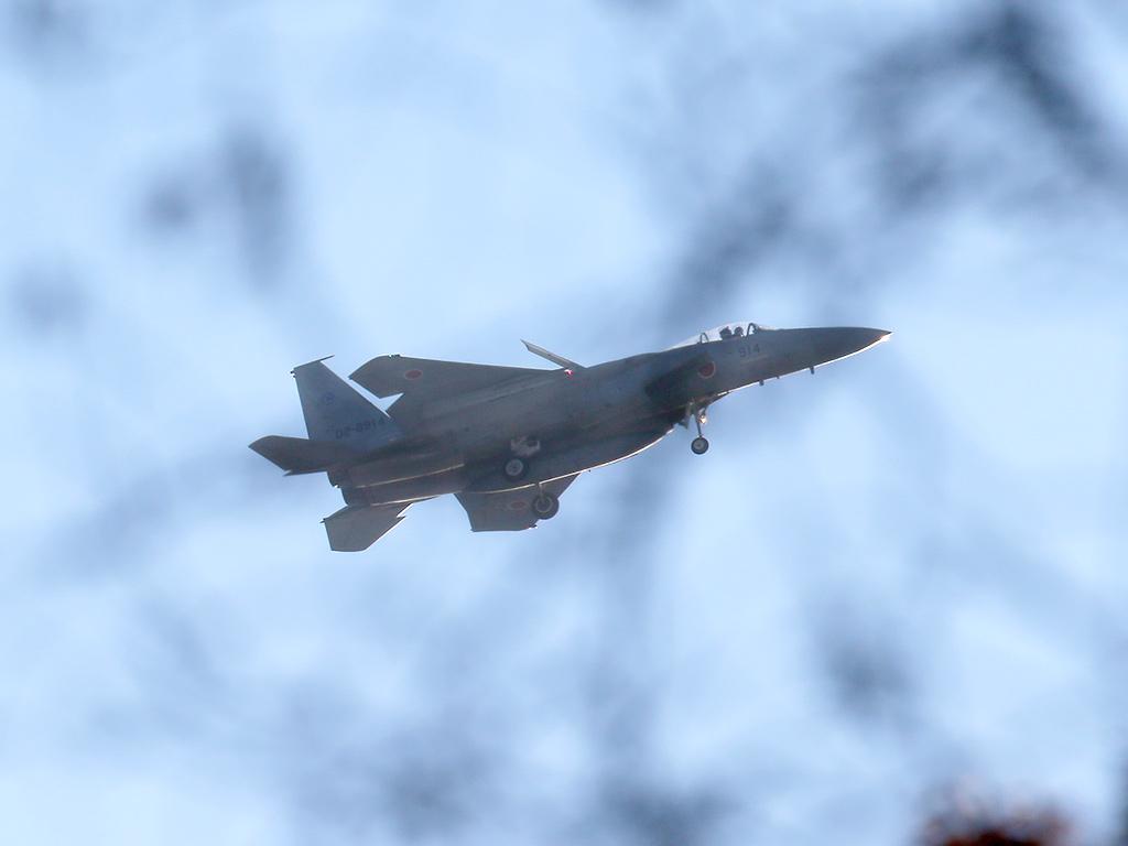 JSDF_F15