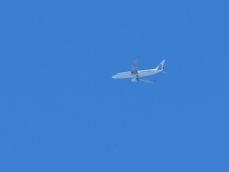 JAL20151207